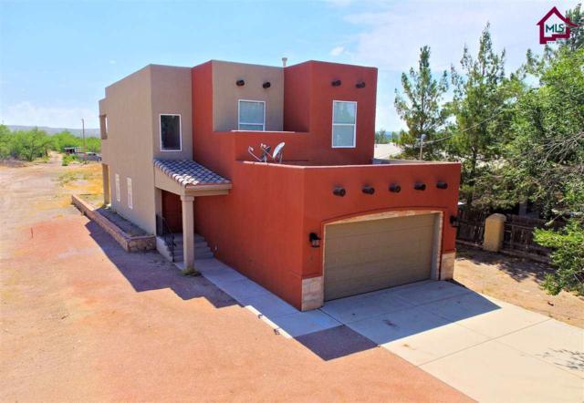 646 Snow Road, Las Cruces, NM 88005 (MLS #1701862) :: Steinborn & Associates Real Estate