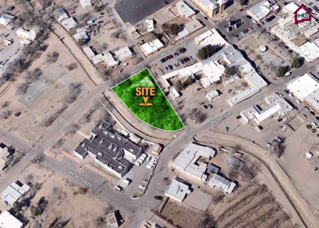 2342 Calle Del Arroyo, Mesilla, NM 88046 (MLS #1701941) :: Steinborn & Associates Real Estate