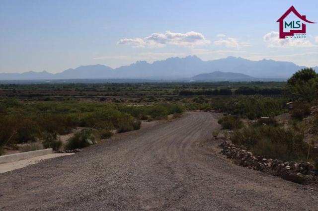 5795 Vista Verde Road, Las Cruces, NM 88005 (MLS #1702024) :: Steinborn & Associates Real Estate