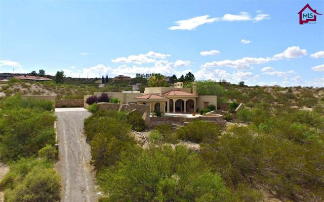 5850 Thielman Drive, Las Cruces, NM 88005 (MLS #1702046) :: Steinborn & Associates Real Estate