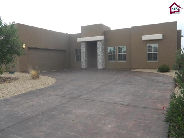 3662 San Clemente, Las Cruces, NM 88012 (MLS #1702050) :: Steinborn & Associates Real Estate