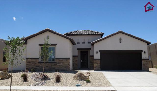 3712 Sienna Ave, Las Cruces, NM 88012 (MLS #1702108) :: Steinborn & Associates Real Estate