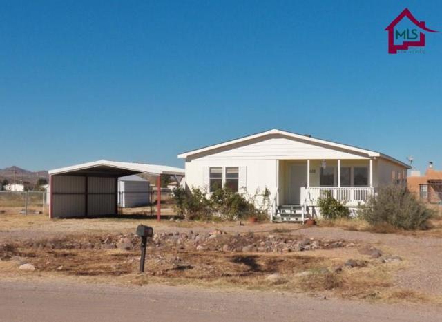 638 Fort Furlong Trail, Radium Springs, NM 88054 (MLS #1702200) :: Steinborn & Associates Real Estate