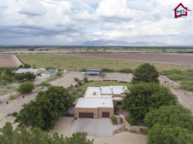 2551 Mesilla Hills Drive, Las Cruces, NM 88005 (MLS #1702245) :: Steinborn & Associates Real Estate