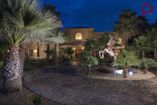 2980 Fair Lady Lane, Las Cruces, NM 88005 (MLS #1702270) :: Steinborn & Associates Real Estate