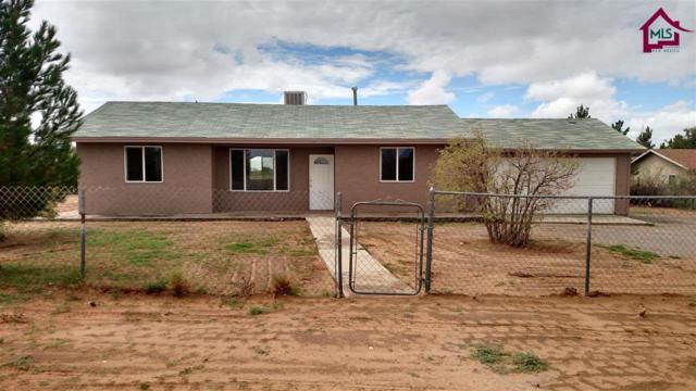 333 Luna Azul Road, Anthony, NM 88021 (MLS #1702282) :: Steinborn & Associates Real Estate