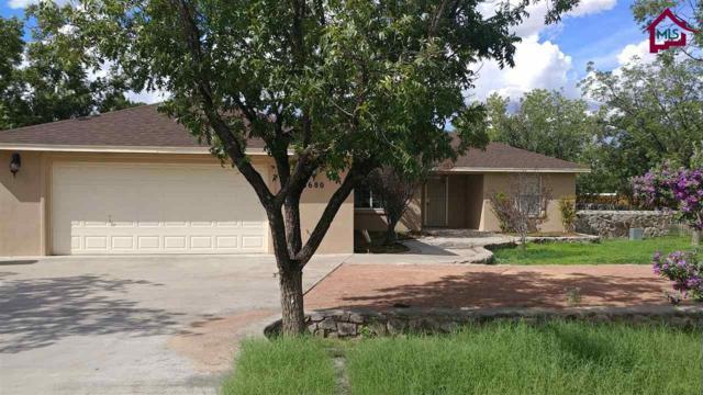 6680 Rio Bravo Drive, Las Cruces, NM 88005 (MLS #1702283) :: Steinborn & Associates Real Estate