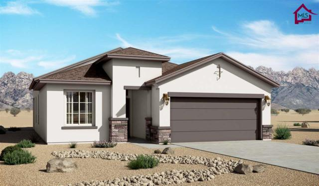 4882 Villeta Ave, Las Cruces, NM 88012 (MLS #1702335) :: Steinborn & Associates Real Estate