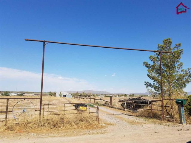 1095 Mustang Street, Vado, NM 88072 (MLS #1702337) :: Steinborn & Associates Real Estate