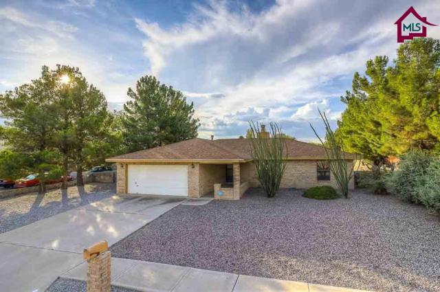 817 Rouault Avenue, Las Cruces, NM 88005 (MLS #1702340) :: Steinborn & Associates Real Estate