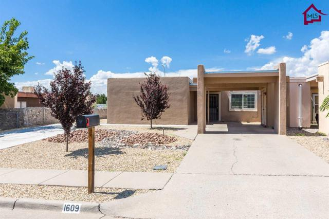 1609 Birch Court, Las Cruces, NM 88001 (MLS #1702351) :: Steinborn & Associates Real Estate