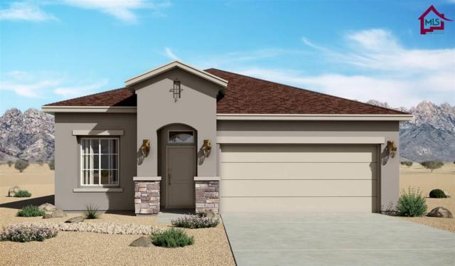 4871 Villeta Ave, Las Cruces, NM 88012 (MLS #1702356) :: Steinborn & Associates Real Estate