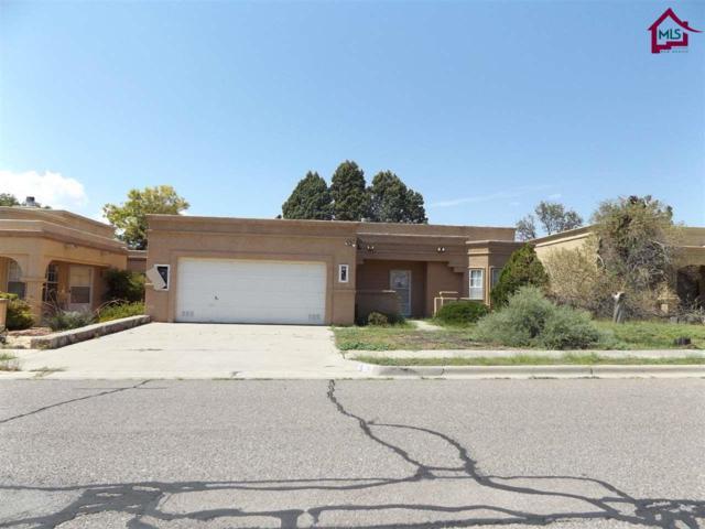 617 Cielo Vista Court, Las Cruces, NM 88005 (MLS #1702360) :: Steinborn & Associates Real Estate
