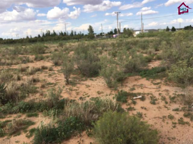 651a Tumbleweed, Chaparral, NM 88081 (MLS #1702361) :: Steinborn & Associates Real Estate