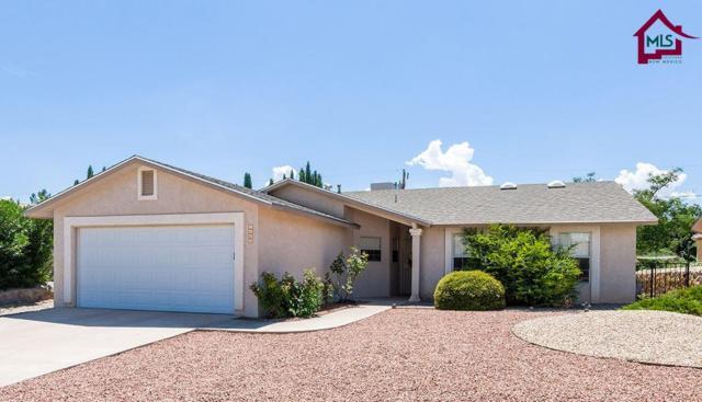 1050 Heather Circle, Las Cruces, NM 88005 (MLS #1702368) :: Steinborn & Associates Real Estate