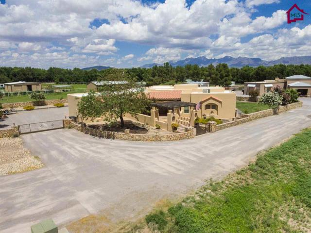 220 Salopek Road, Las Cruces, NM 88005 (MLS #1702371) :: Steinborn & Associates Real Estate