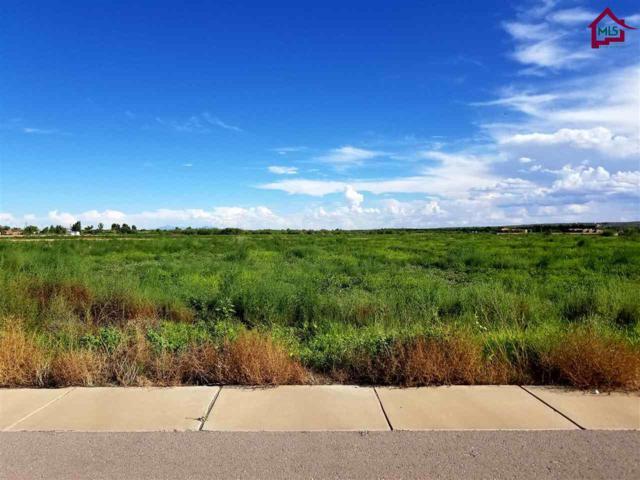 4397 Rociante Drive, Las Cruces, NM 88005 (MLS #1702398) :: Steinborn & Associates Real Estate