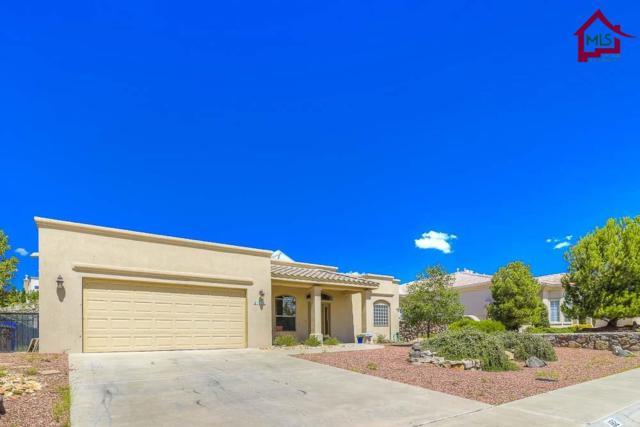 1182 Warm Springs Lane, Las Cruces, NM 88011 (MLS #1702414) :: Steinborn & Associates Real Estate