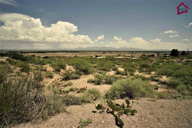 2 Acre Raasaf Drive, Las Cruces, NM 88007 (MLS #1702416) :: Steinborn & Associates Real Estate
