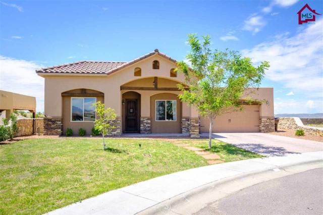 3197 Rio Arriza Loop, Las Cruces, NM 88012 (MLS #1702417) :: Steinborn & Associates Real Estate
