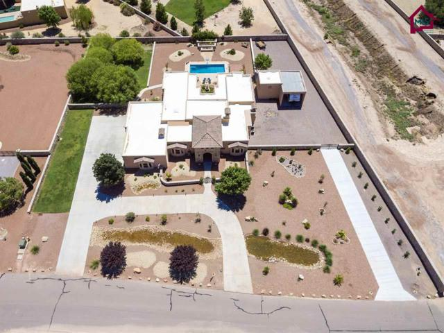 5570 Redfox Road, Las Cruces, NM 88007 (MLS #1702419) :: Steinborn & Associates Real Estate