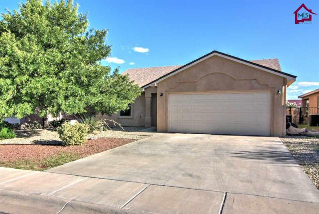 2933 Onate Street, Las Cruces, NM 88007 (MLS #1702420) :: Steinborn & Associates Real Estate