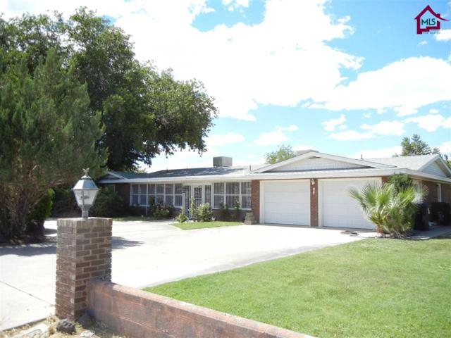 1516 San Andres Drive, Las Cruces, NM 88005 (MLS #1702427) :: Steinborn & Associates Real Estate
