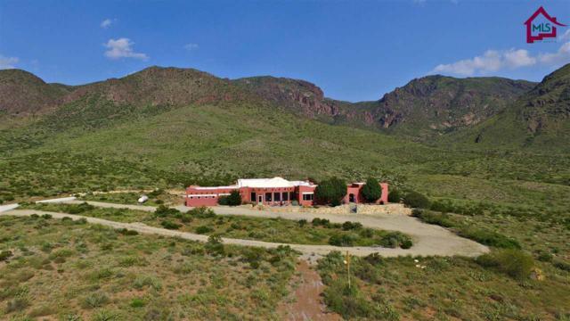 181 Pena Blanca Loop, Las Cruces, NM 88011 (MLS #1702605) :: Steinborn & Associates Real Estate