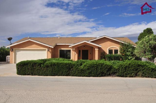 5444 Amarillo Del Sol, Las Cruces, NM 88007 (MLS #1702771) :: Steinborn & Associates Real Estate