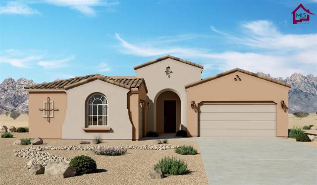 3672 Lunetta Ct, Las Cruces, NM 88012 (MLS #1702794) :: Steinborn & Associates Real Estate