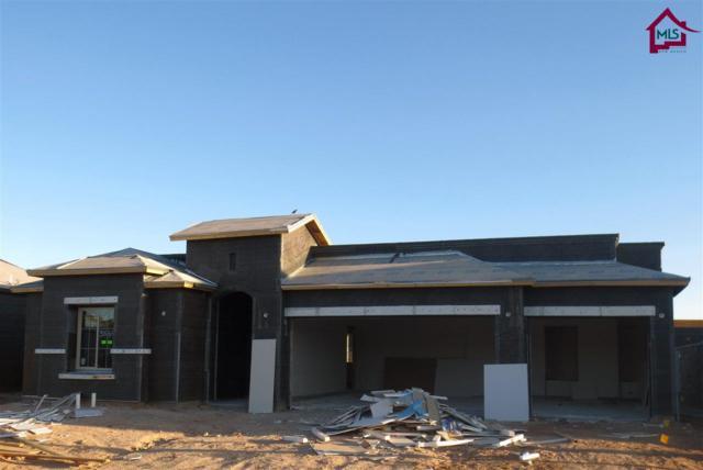 3664 Lunetta Ct, Las Cruces, NM 88012 (MLS #1702798) :: Steinborn & Associates Real Estate