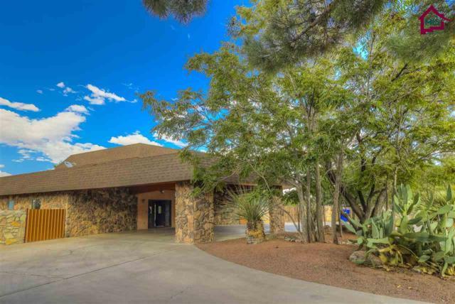 302 Sanchez Place, Las Cruces, NM 88005 (MLS #1702827) :: Steinborn & Associates Real Estate
