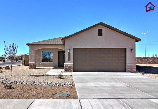 4864 Califa Ave, Las Cruces, NM 88012 (MLS #1702847) :: Steinborn & Associates Real Estate