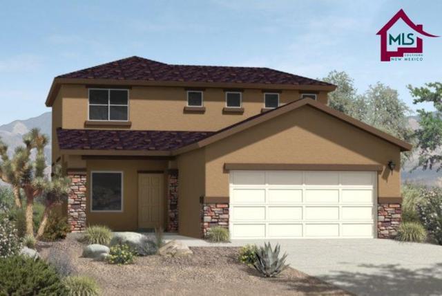 4788 Sonoran Ave, Las Cruces, NM 88012 (MLS #1702852) :: Steinborn & Associates Real Estate
