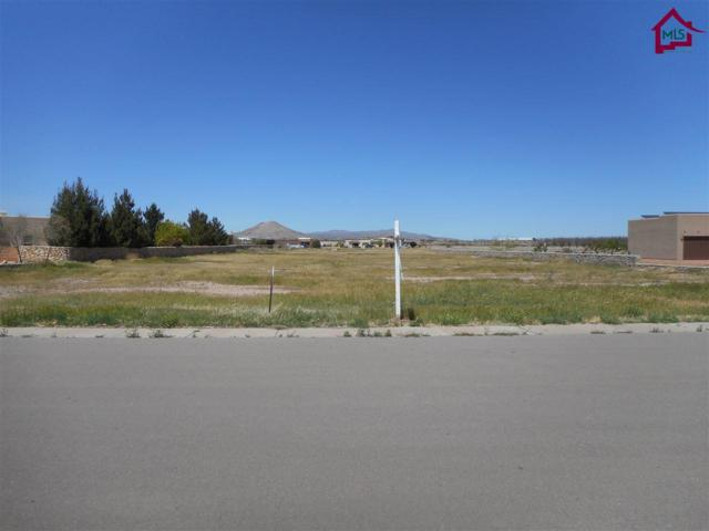 4866 Rociante Drive, Las Cruces, NM 88005 (MLS #1702861) :: Steinborn & Associates Real Estate