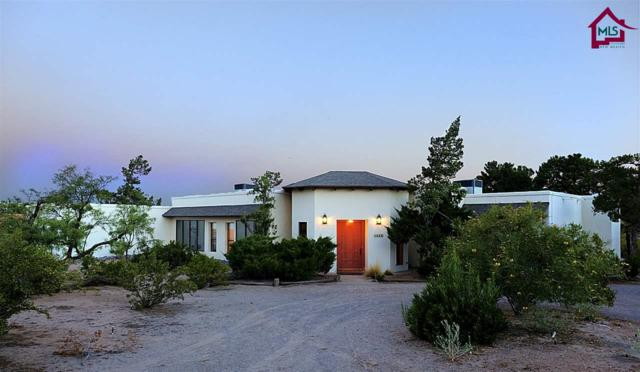 4669 Falcon Drive, Las Cruces, NM 88011 (MLS #1702868) :: Steinborn & Associates Real Estate