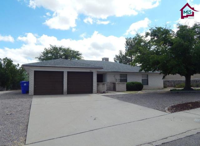 1825 Las Tunas Drive, Las Cruces, NM 88011 (MLS #1702882) :: Steinborn & Associates Real Estate