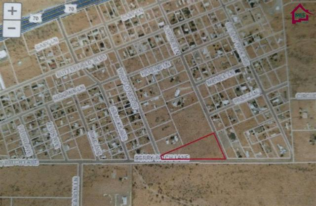 00 Berry Patch Lane, Las Cruces, NM 88011 (MLS #1702883) :: Steinborn & Associates Real Estate
