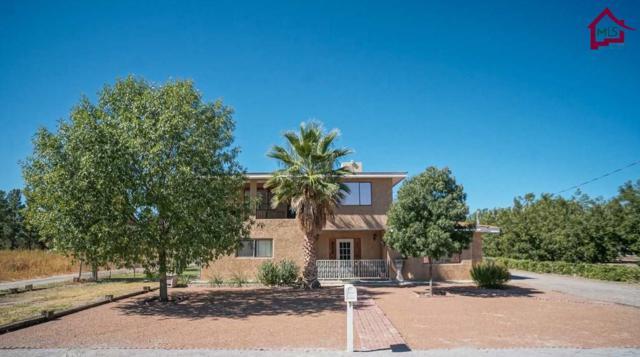 3920 Watson Place, Las Cruces, NM 88005 (MLS #1702893) :: Steinborn & Associates Real Estate