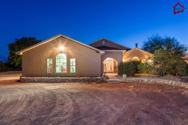 5490 J. H. Sharp Road, Las Cruces, NM 88011 (MLS #1702899) :: Steinborn & Associates Real Estate