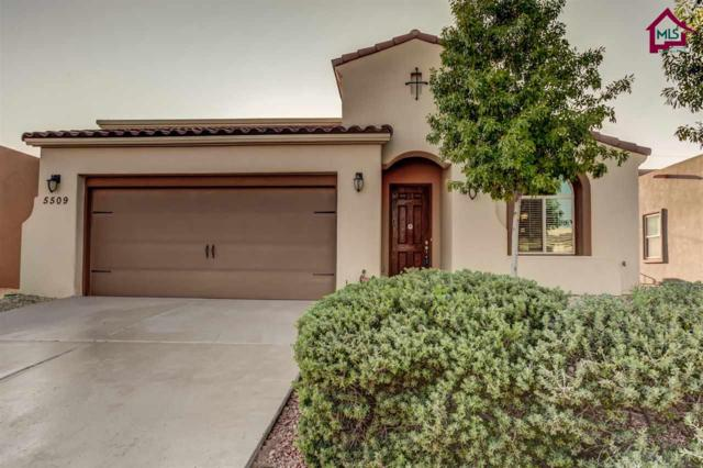 5509 Grove Drive, Sunland Park, NM 88063 (MLS #1702900) :: Steinborn & Associates Real Estate