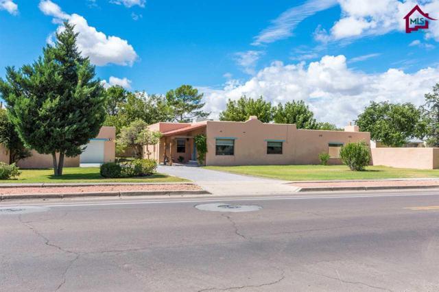 1703 N Alameda Boulevard, Las Cruces, NM 88007 (MLS #1702902) :: Steinborn & Associates Real Estate