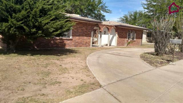 2801 Topley Avenue, Las Cruces, NM 88005 (MLS #1702912) :: Steinborn & Associates Real Estate
