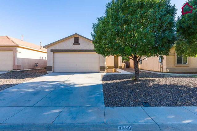 4990 Kyler Road, Las Cruces, NM 88012 (MLS #1702966) :: Steinborn & Associates Real Estate