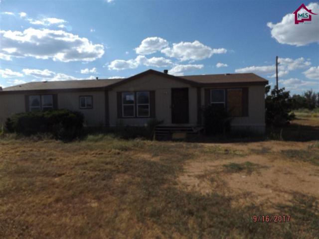 7835 Moore Circle, Las Cruces, NM 88012 (MLS #1702968) :: Steinborn & Associates Real Estate
