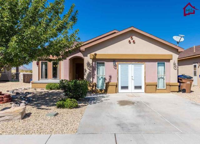 3689 Vista Belleza Ave, Las Cruces, NM 88012 (MLS #1702981) :: Steinborn & Associates Real Estate