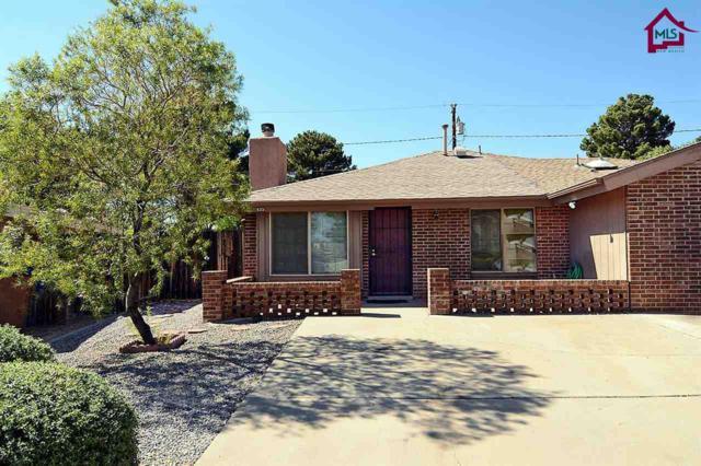 633 Sheryl Way, Las Cruces, NM 88001 (MLS #1702982) :: Steinborn & Associates Real Estate