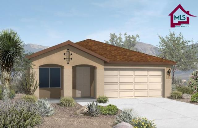 4860 Califa Ave, Las Cruces, NM 88012 (MLS #1702986) :: Steinborn & Associates Real Estate