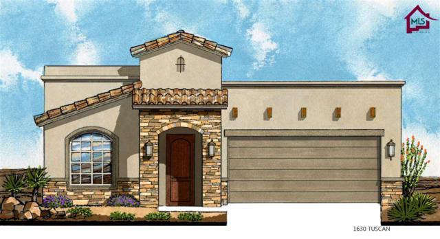 3664 Cabrillo Court, Las Cruces, NM 88012 (MLS #1702991) :: Steinborn & Associates Real Estate