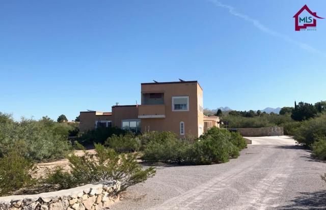 4460 Falcon Drive, Las Cruces, NM 88011 (MLS #1702996) :: Steinborn & Associates Real Estate